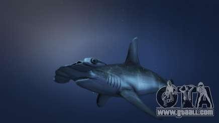The hammerhead shark from GTA 5