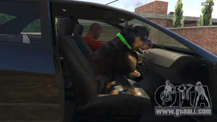 How to train a dog in GTA 5