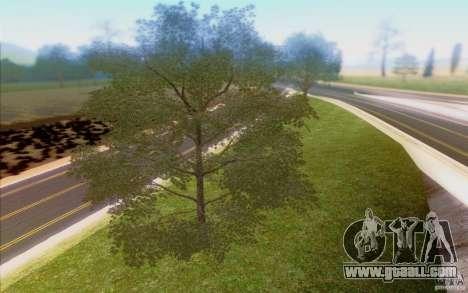Behind Space Of Realities 2013 for GTA San Andreas ninth screenshot