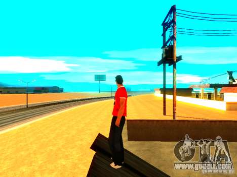 Skin reporter for GTA San Andreas third screenshot