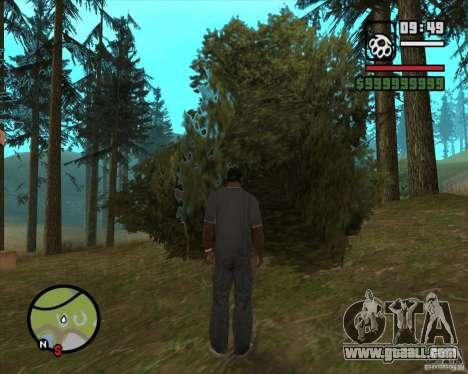 House Hunter v2.0 for GTA San Andreas sixth screenshot