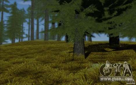 Behind Space Of Realities 2013 for GTA San Andreas fifth screenshot