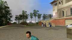 Superior Park National Weapons for GTA Vice City