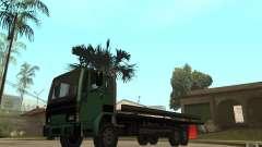 DFT30 Dumper Truck