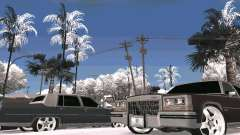 Winter Color Mod for GTA San Andreas