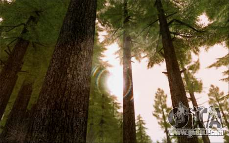 SA Illusion-S v5.0 - Final Edition for GTA San Andreas eighth screenshot