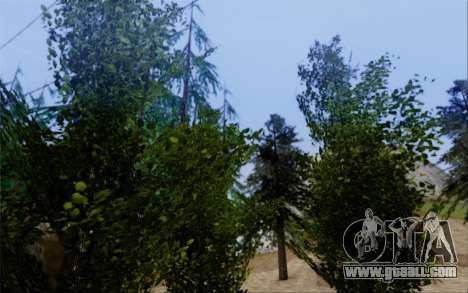New vegetation 2013 for GTA San Andreas ninth screenshot