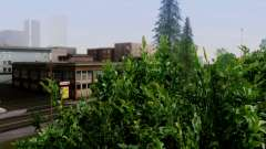 New vegetation 2013 for GTA San Andreas
