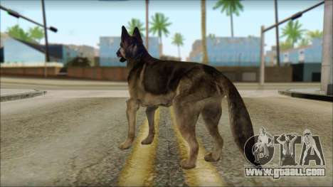 Dog Skin v1 for GTA San Andreas second screenshot