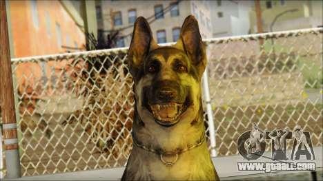Dog Skin v1 for GTA San Andreas third screenshot