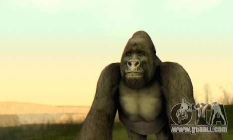 Gorilla (Mammal) for GTA San Andreas