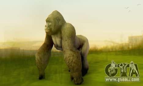 Gorilla (Mammal) for GTA San Andreas forth screenshot