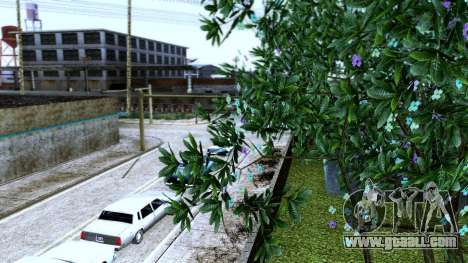 Grand ENB for Weak PC for GTA San Andreas third screenshot