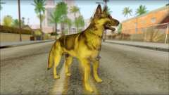 Dog Skin v1 for GTA San Andreas