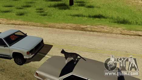 The possibility of GTA V to play for animals for GTA San Andreas fifth screenshot