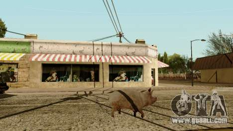 The possibility of GTA V to play for animals for GTA San Andreas seventh screenshot