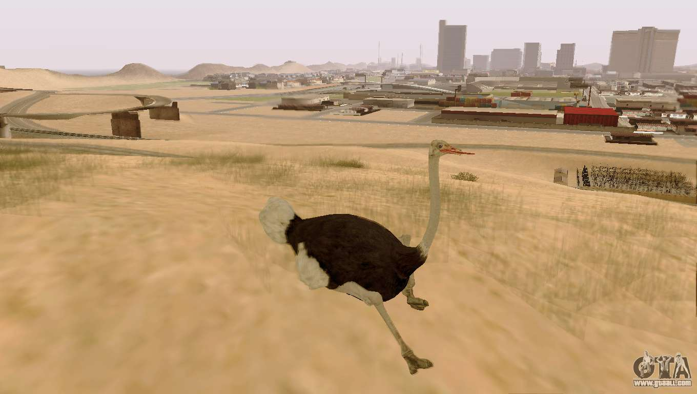 how to play as cat in gta 5