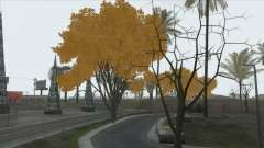 Autumn in SA v2 for GTA San Andreas