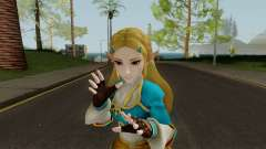 Zelda Hyrule Warriors (BOTW) for GTA San Andreas
