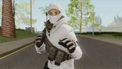 Arctic Leet Skin V3 (Counter-Strike Online 2) for GTA San Andreas