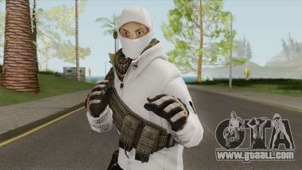 Arctic Leet Skin V3 (Counter-Strike Online 2) for GTA San Andreas
