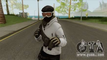 Arctic Leet Skin V1 (Counter-Strike Online 2) for GTA San Andreas