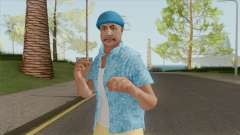 Skin Random 194 (Outfit Beach) for GTA San Andreas